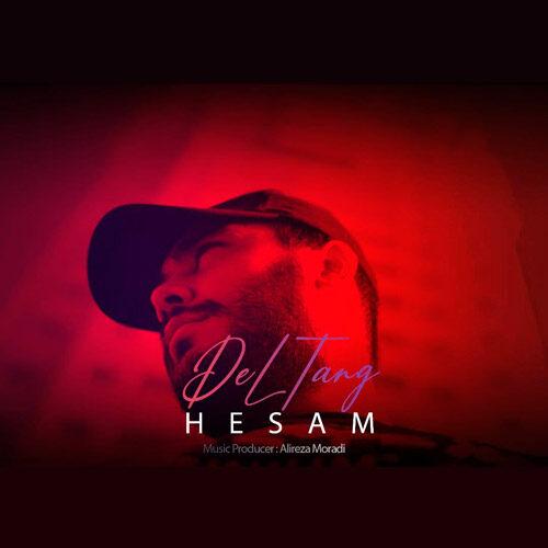 دانلود موزیک جدید حسام دلتنگ